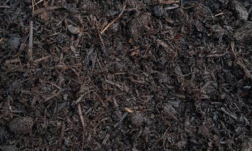 mushroom-compost (1)